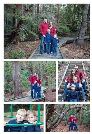 Shoup Park and Redwood Groves, Los Altos