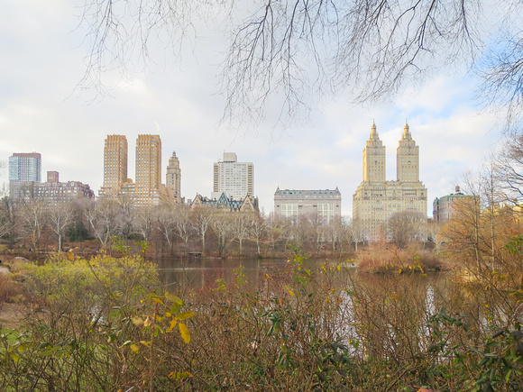 The juxtaposition of buildings and nature from Central Park.