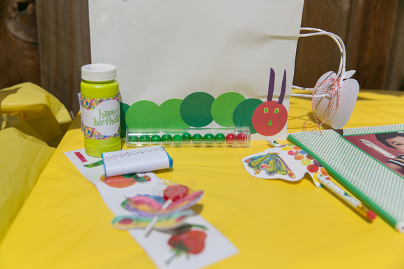 A Very Hungry Caterpillar Birthday Bash