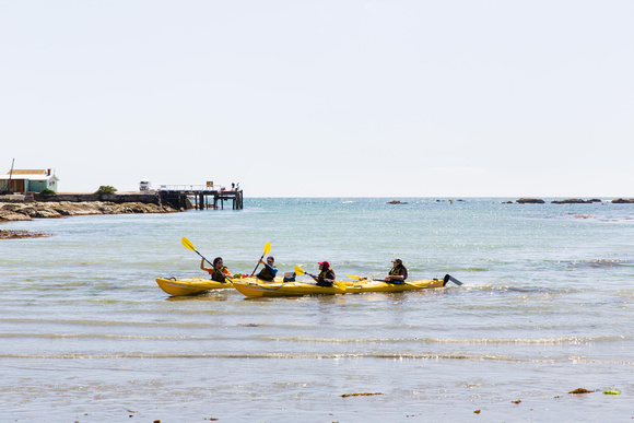 Go Sea Kayaking in Kaikoura and check out the seals and whales.