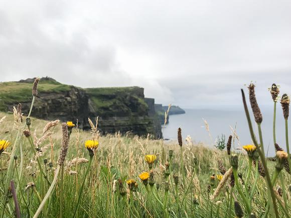 IRELAND, Cliffs of Insanity